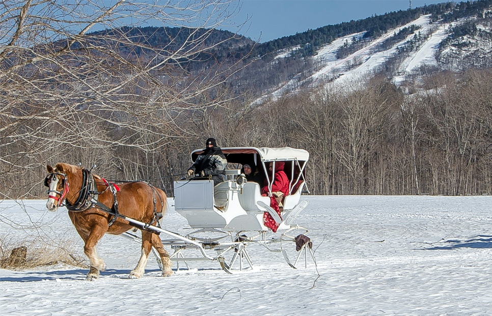 sleigh ride in the  White mounains
