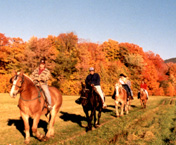 Take a fall foliage horseback ride at the Farm by the River North Conway, NH