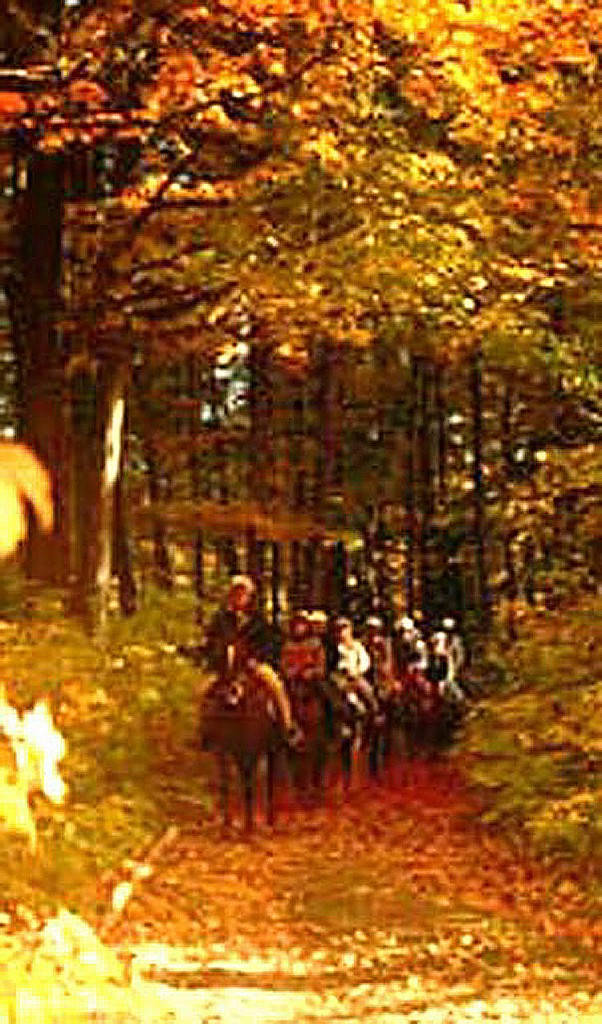 Fall Horseback and Carriage rides through the Maple Sugarorchards along the Saco River