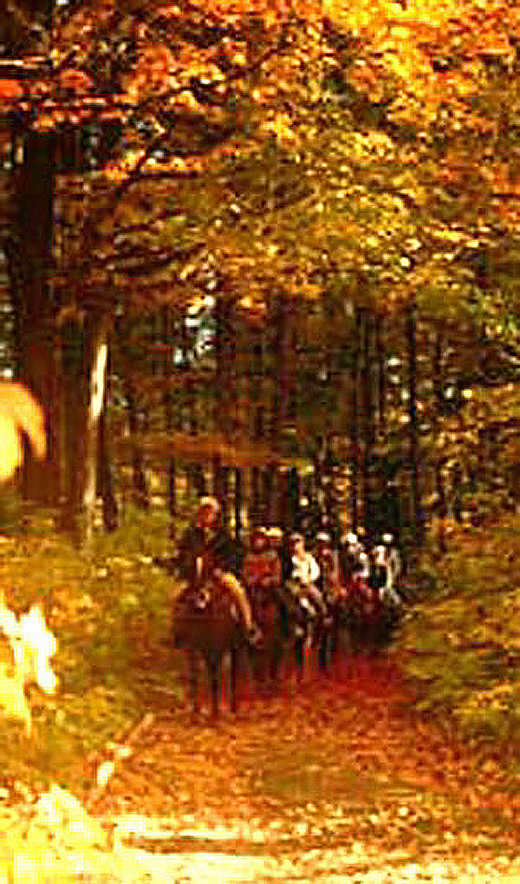 Fall Horseback and Carriage rides through the Maple Sugar forest along the Saco River