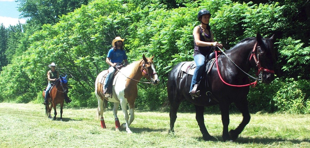 Stables - Horseback Riding | Farm By The River