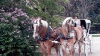 Mother's Day Package with Carriage Ride-Farm by the River Bed and Breakfast