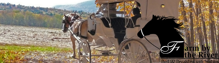 Horse and carriage rides in North Conway, NH