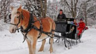 Valentine Special-Private Victorian Sleigh Ride for two and more