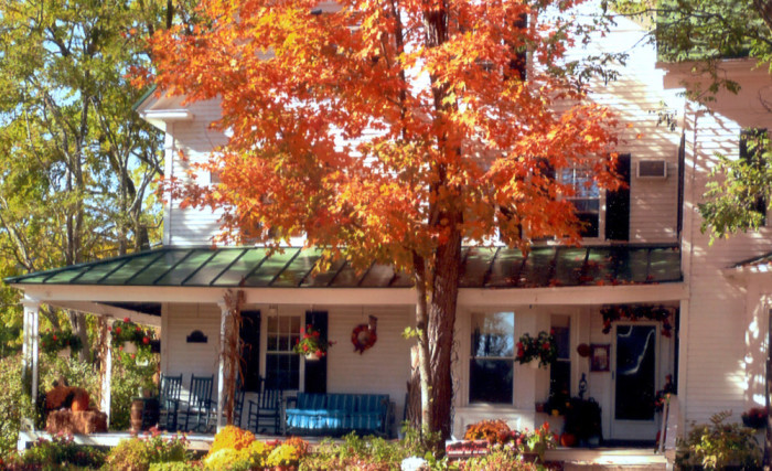 Farm by the River Band B, North Conway NH with fall foliage horseback and carriage rides