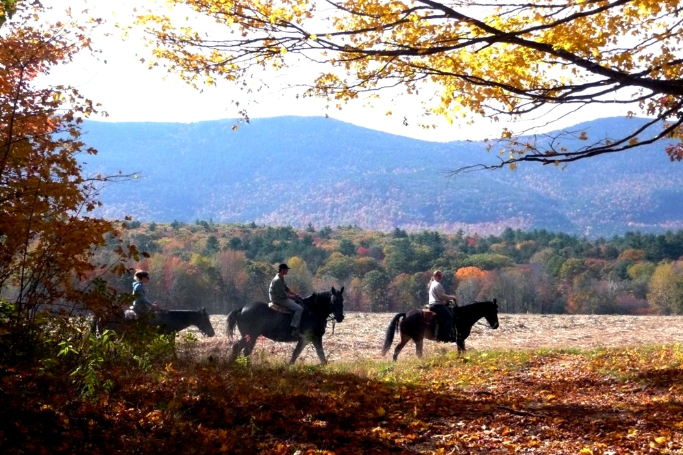 Fall foliage horseback or carriage rides with White Mountain Views