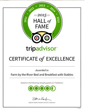 2015 Trip Advisor Hall of Fame - Excellence for five consecutive years in a row