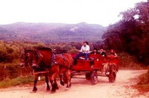 Family Wagon rides north conway lodging package