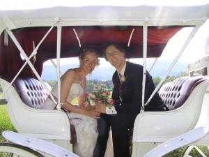 Carriage Wedding