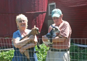 Name the baby goats contest