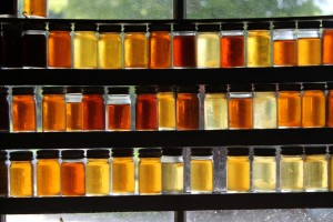 Varieties of Maple Sugar Grades