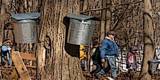 March Maple Madness-Maple sugaring event