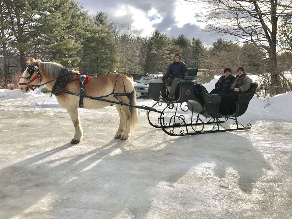 Sleigh rides today! Farm by the River B and B with Stables