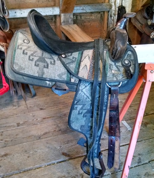 Horses, Saddles, Tack and Equipment for Sale - Farm By The